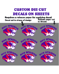 Outdoor Custom Die Cut Decals on Sheets with Application tape for easier applacation